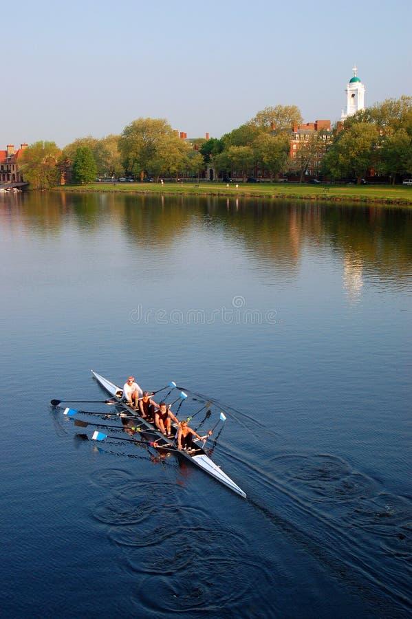 Fyra - för sculllag för person samundervisnings- glidljud ner Charles River royaltyfria bilder