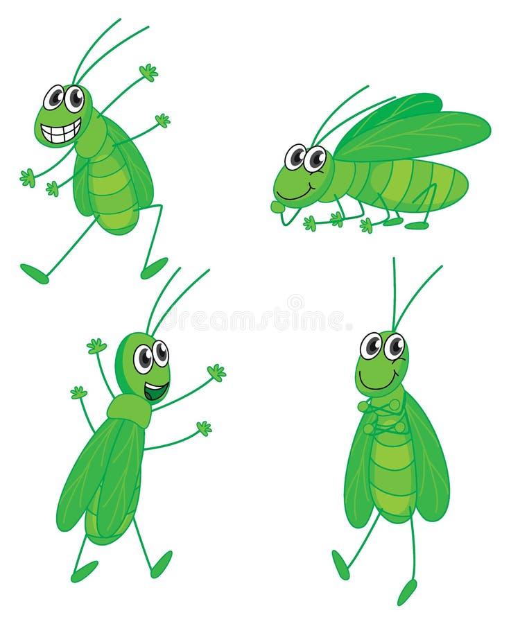 Fyra gräshoppor vektor illustrationer