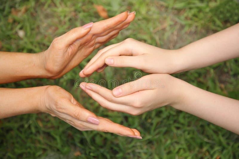 fyra händer royaltyfri bild