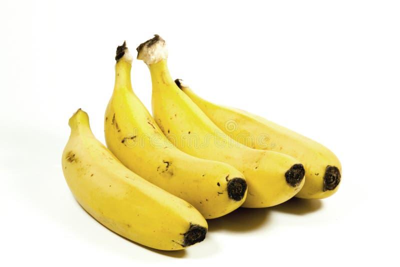 Fyra isolerade gula mogna bananer på vit arkivfoton
