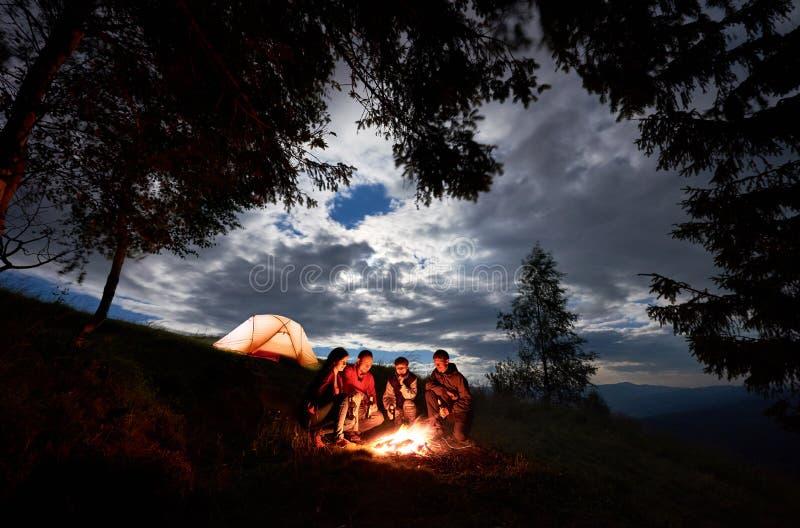 Fyra - personen sitter runt om brand med öl nära campa och träd på gryning arkivbild