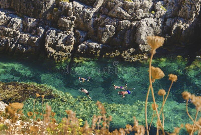 Fyra personer som simmar, snorklar, spelar och undersöker de undervattens- skatterna i det kristallklara turkosvattnet av royaltyfri foto