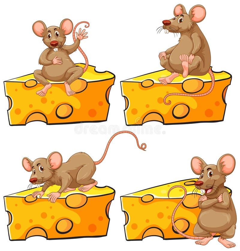 Fyra poserar av mus och ost stock illustrationer