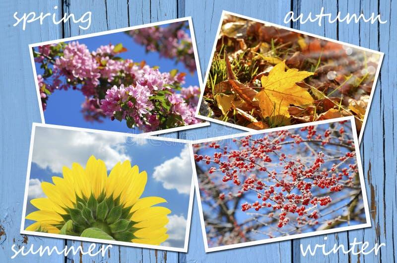Fyra säsonger av årssamlingen arkivfoton
