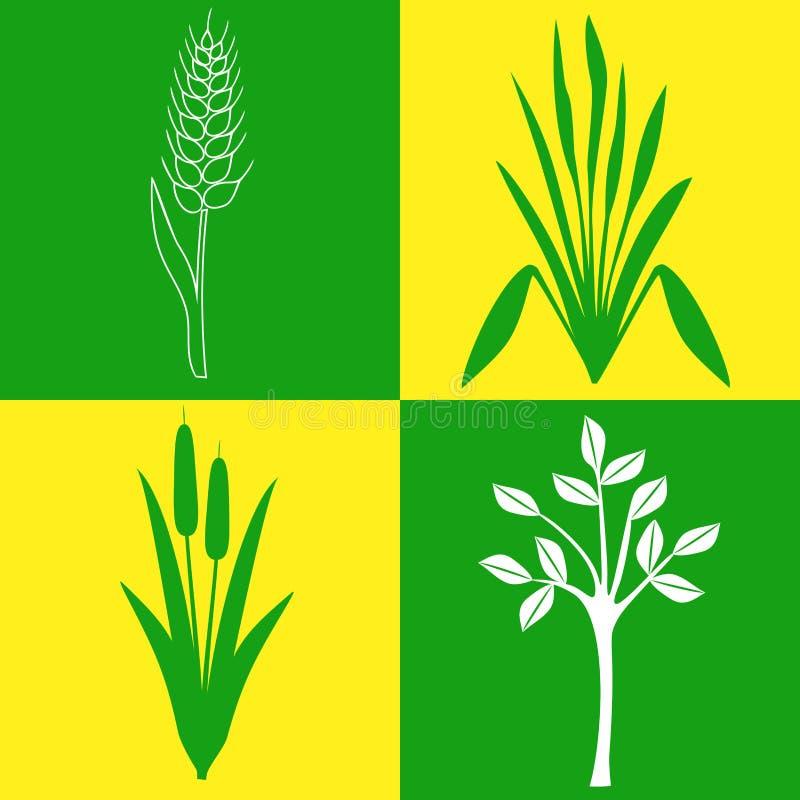 Fyra symboler på ämnet av växter, botanik som arbeta i trädgården vektor illustrationer
