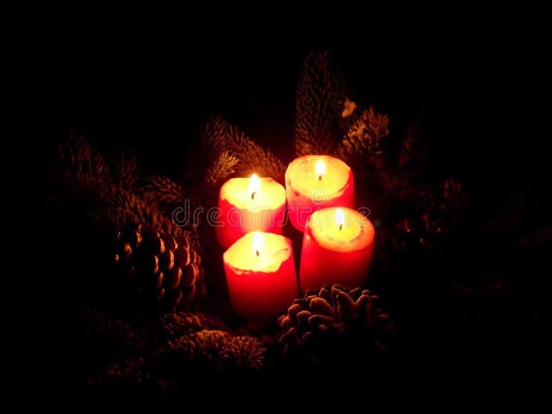 Fyra tände röda stearinljus med sörjer kottearrangment arkivbild