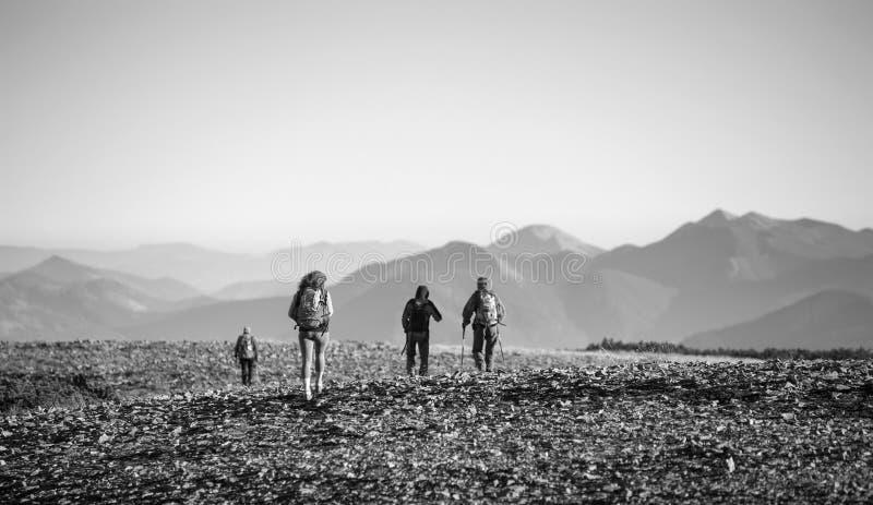 Fyra unga idrotts- personer som går på det steniga berget plato arkivfoto