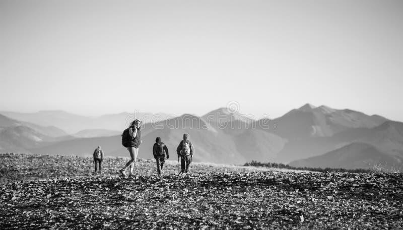 Fyra unga idrotts- personer som går på det steniga berget plato royaltyfri fotografi