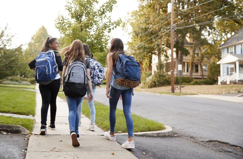 Fyra unga tonåriga flickor som tillsammans går till skolan, beskådar tillbaka royaltyfri bild