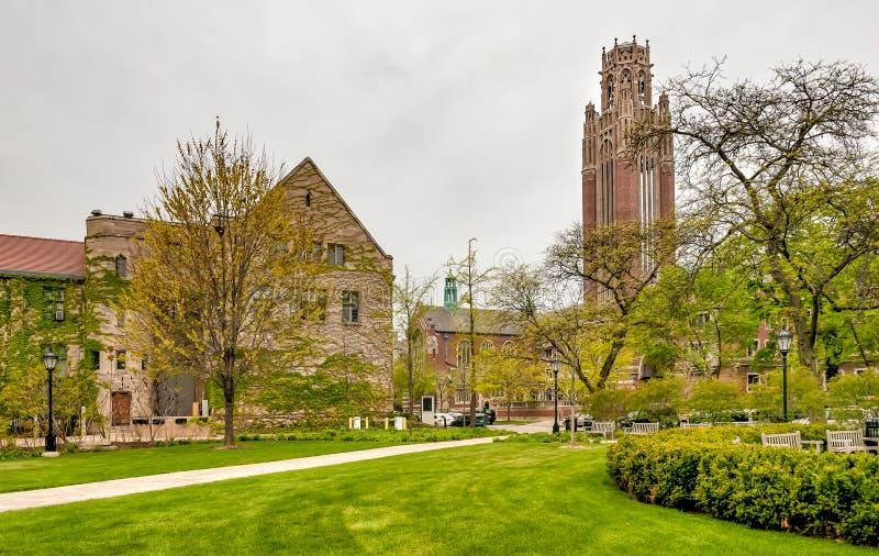 Fyrkant av den Chicago universitetsområdet med sikt av Saieh Hall för nationalekonomitorn, USA royaltyfri fotografi