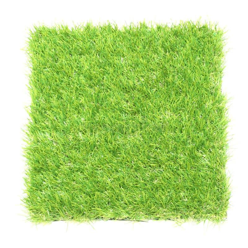 Fyrkant av fältet för grönt gräs royaltyfria bilder