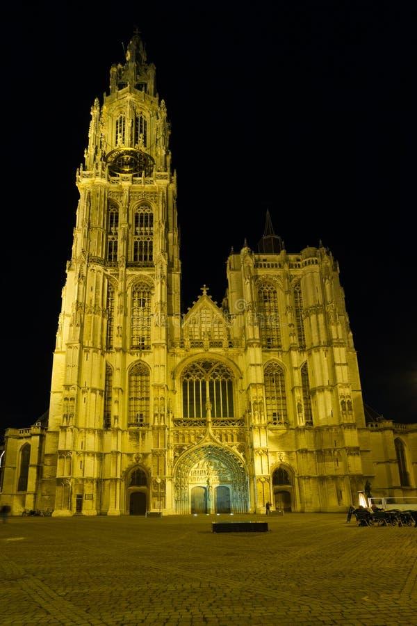 Fyrkant för natt för Antwerp domkyrkaframdel fotografering för bildbyråer