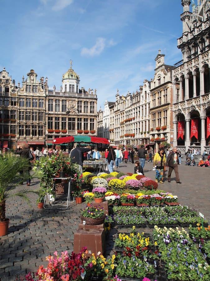 fyrkant för ställe för storslagen marknad för brussels blomma medel royaltyfri fotografi