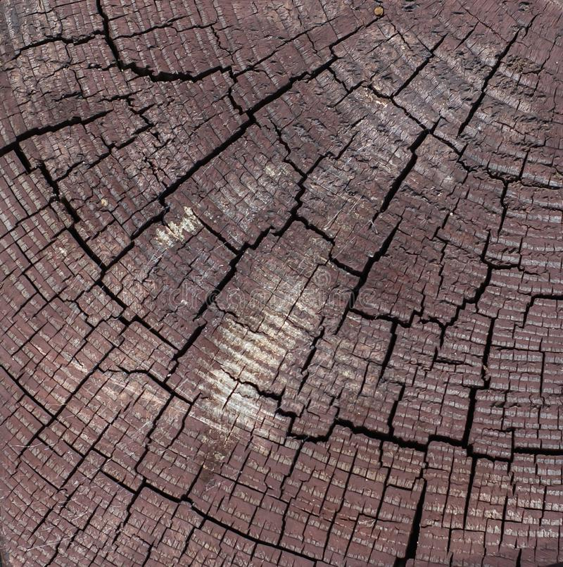 Fyrkantbruntträpinne som klipps med svarta sprickor arkivfoton