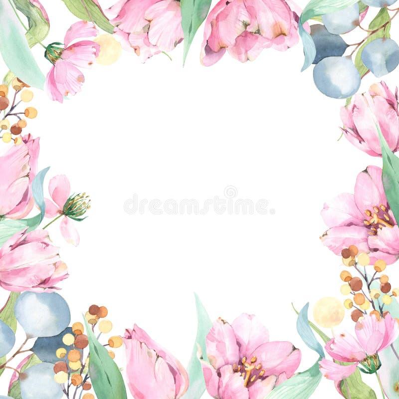 Fyrkantig blom- sammansättning för vattenfärg med att blomma blommor, gräsplaner och eukalyptuns royaltyfri illustrationer