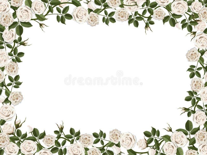 Fyrkantig gräns av vita rosor royaltyfri illustrationer