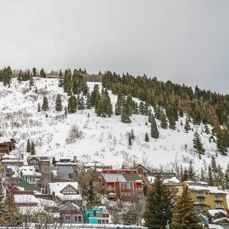 Fyrkantiga ramuppehåll som byggs på ett berg med barrträd och ny insnöad vinter arkivbild