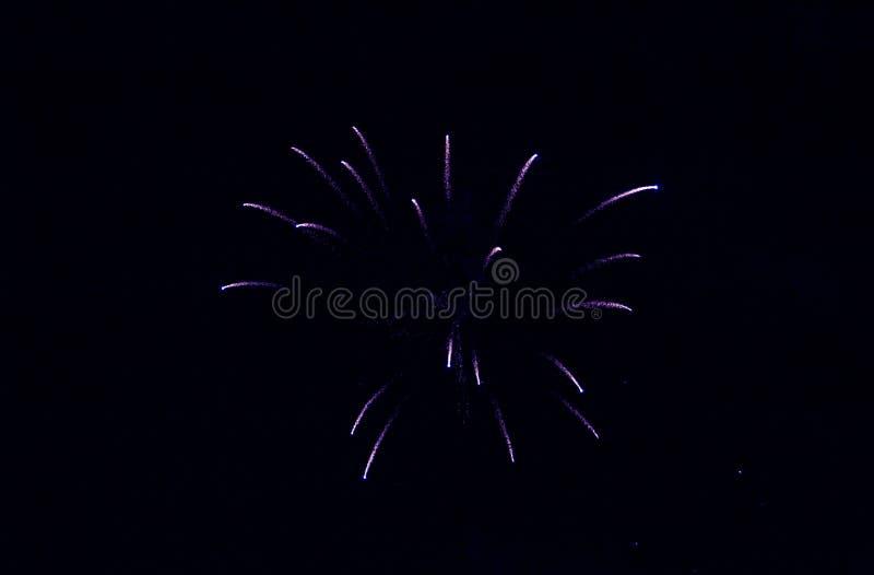 Fyrverkerier för ` s för nytt år Himmel 2019 med blå färg royaltyfri foto