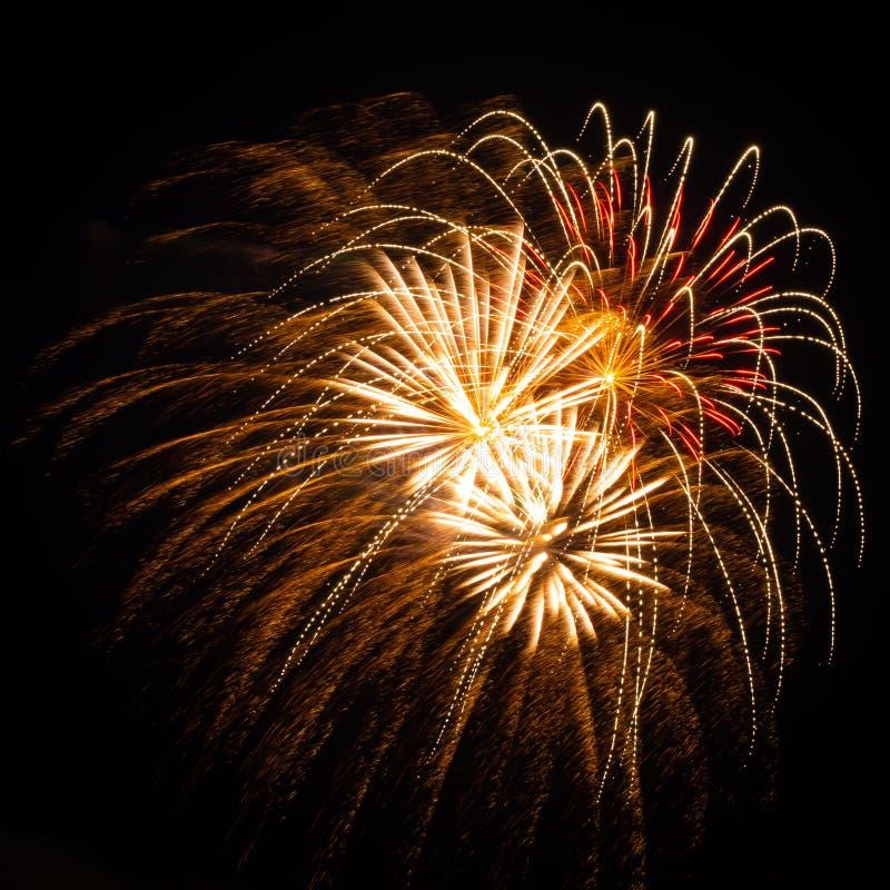 Fyrverkerier med enkla, röda, gröna och guld exploderar under en självständighetsdag i Förenta staterna royaltyfri bild