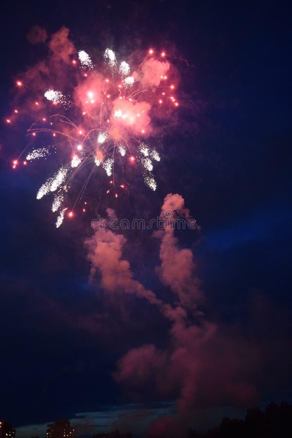 Fyrverkeriexplosioner i natthimlen royaltyfri bild