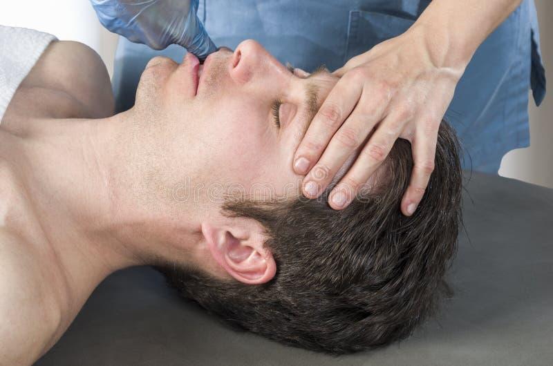 Fysioterapeuten gör intraoral teknik av massagemassetermuskeln osteopathy arkivfoton