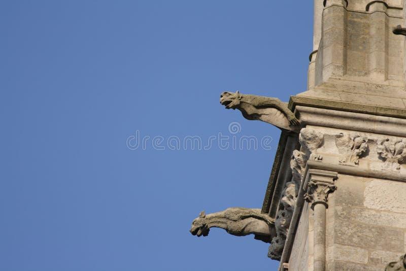 Gárgola en la catedral de Amiens foto de archivo libre de regalías