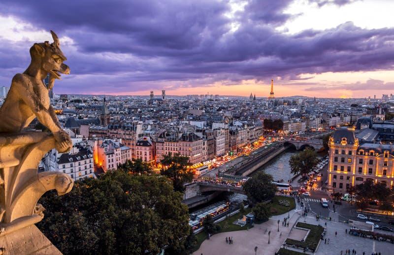 Gárgula em Notre Dame In Paris no por do sol imagens de stock
