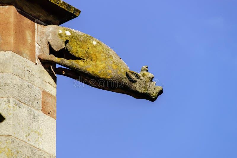 Gárgula em uma catedral gótico, detalhe de uma torre em vagabundos do céu azul foto de stock