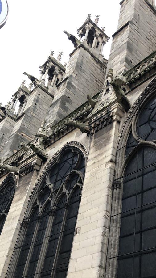 Gárgulas de Notre Dame foto de stock royalty free