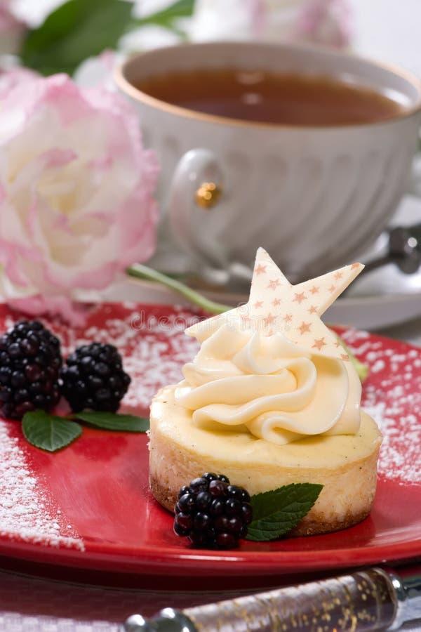 Gâteau au fromage d'haricot de vanille photo libre de droits
