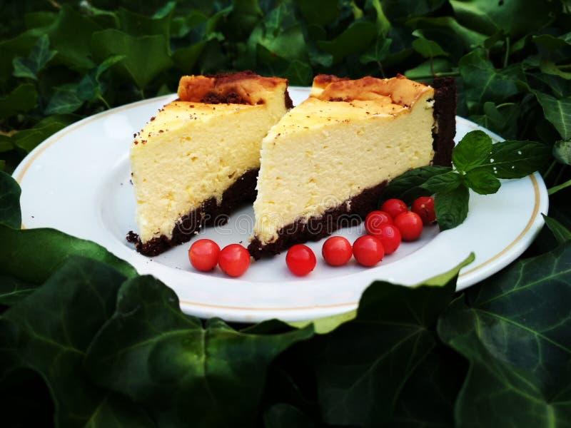 Gâteau au fromage savoureux photo stock