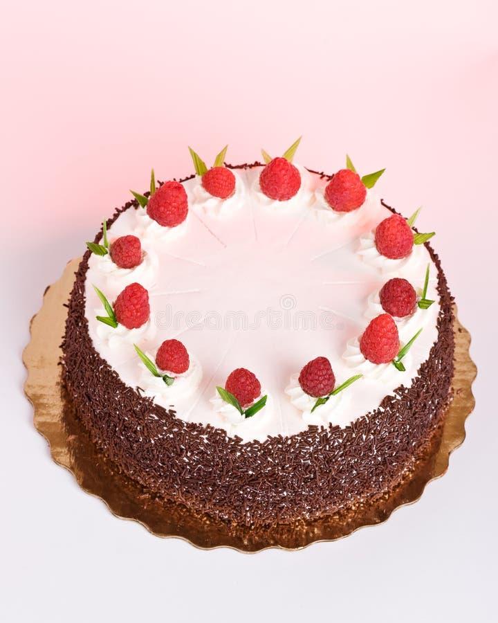 Gâteau avec des framboises photographie stock libre de droits