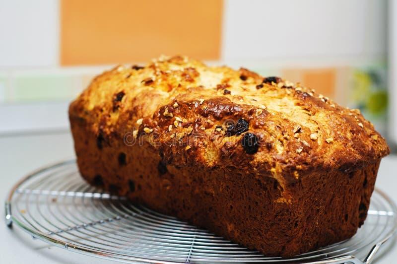 Gâteau belge de Cramique photo stock