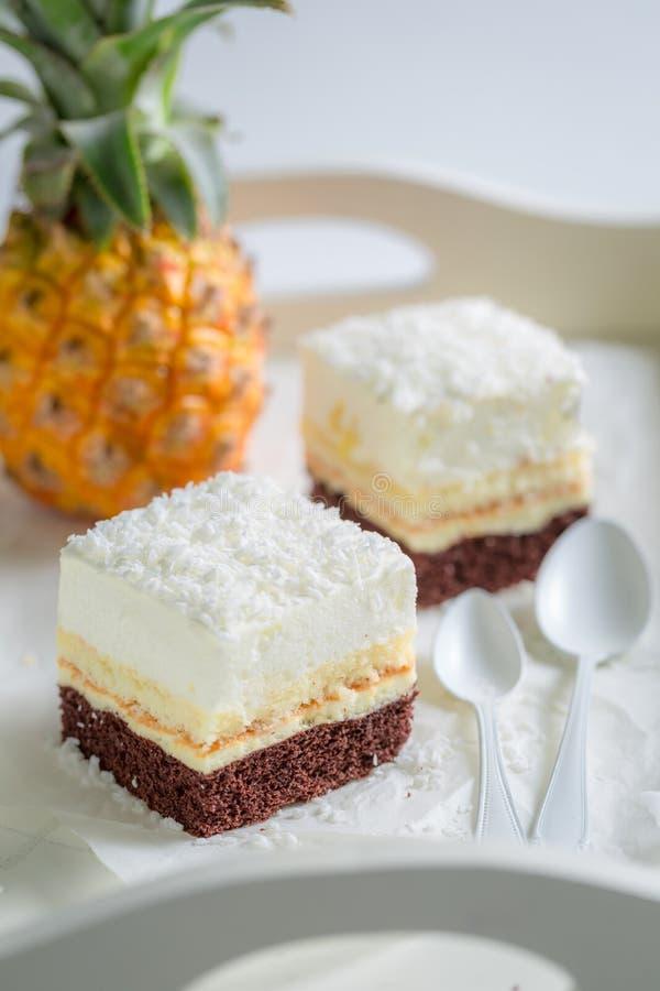 Gâteau blanc délicieux avec l'ananas et le fond brun images libres de droits