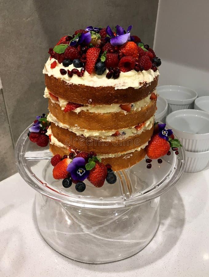 Gâteau coloré aux baies photo stock