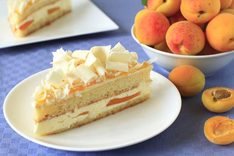 Gâteau d'abricot image libre de droits
