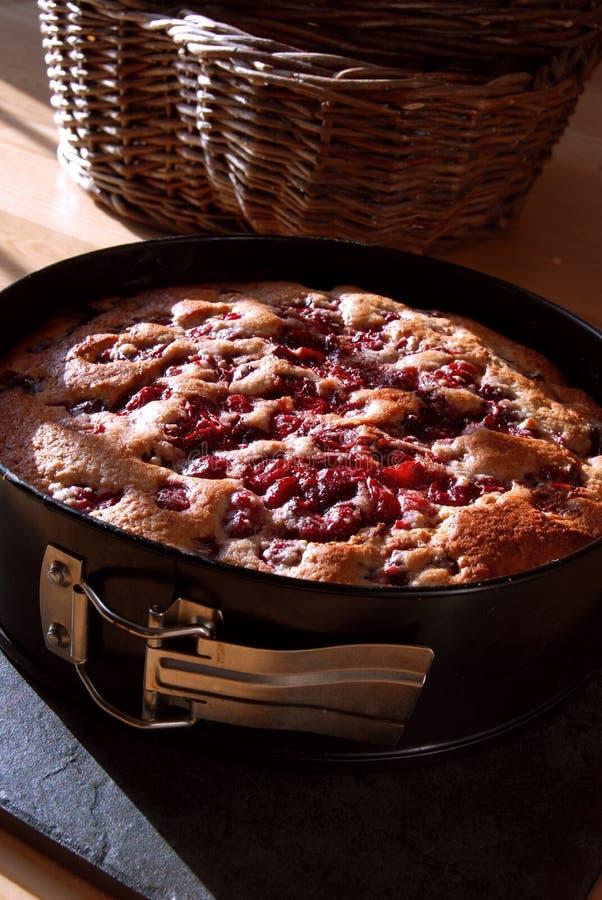 Gâteau de cerise dans un bidon de traitement au four images stock