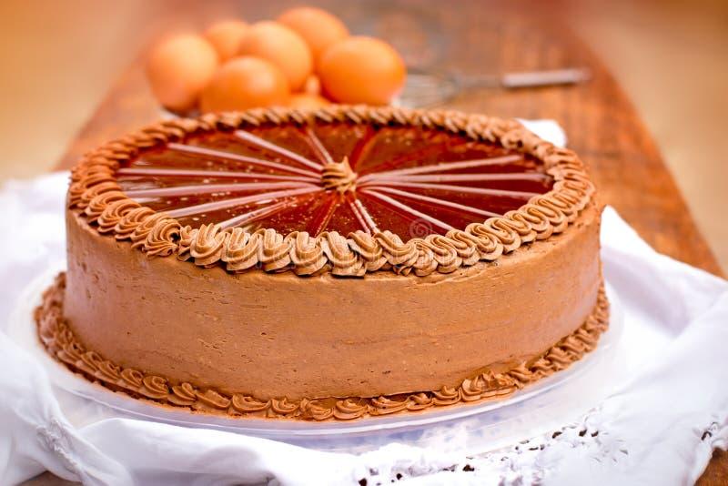 Gâteau de chocolat - gâteau de Dobos images libres de droits