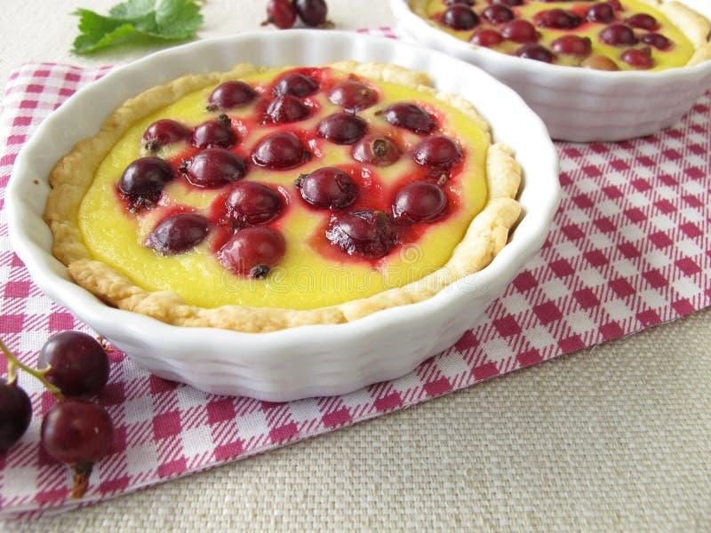 Gâteau de Jostaberry avec le pudding photos libres de droits