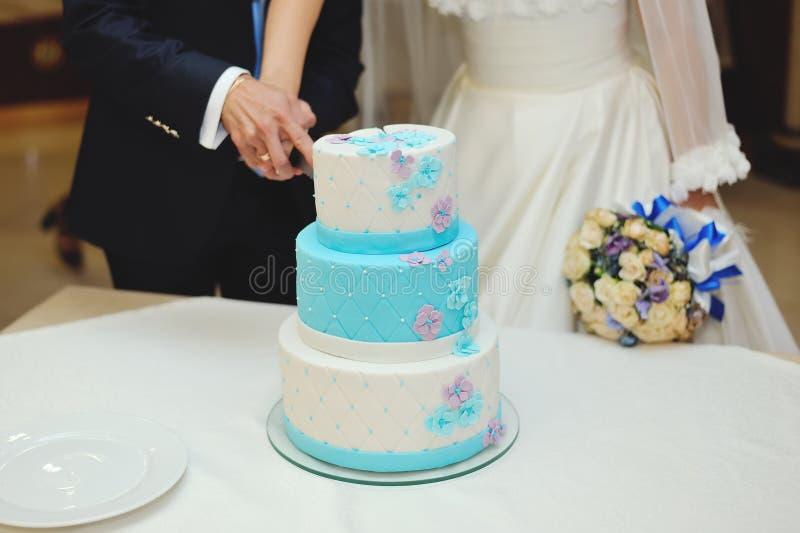 Gâteau de mariage de coupe de jeunes mariés images libres de droits