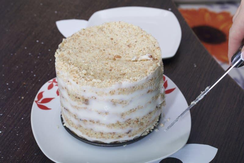 Gâteau de miette nouvellement fabriqué de biscuit avec la crème anglaise Couches évidentes de biscuit et de crème Une femme coupe photo libre de droits