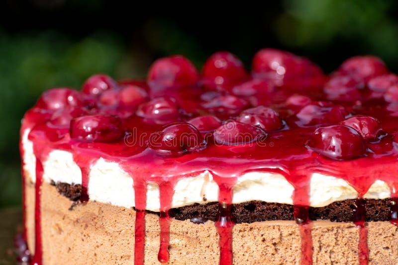 Gâteau de moos de cerise avec le plan rapproché de fruit frais images stock