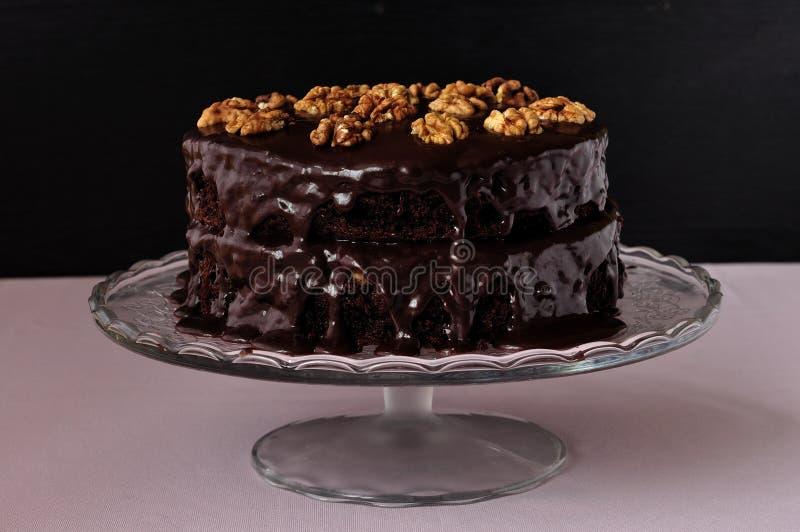 Gâteau de tortue photo libre de droits