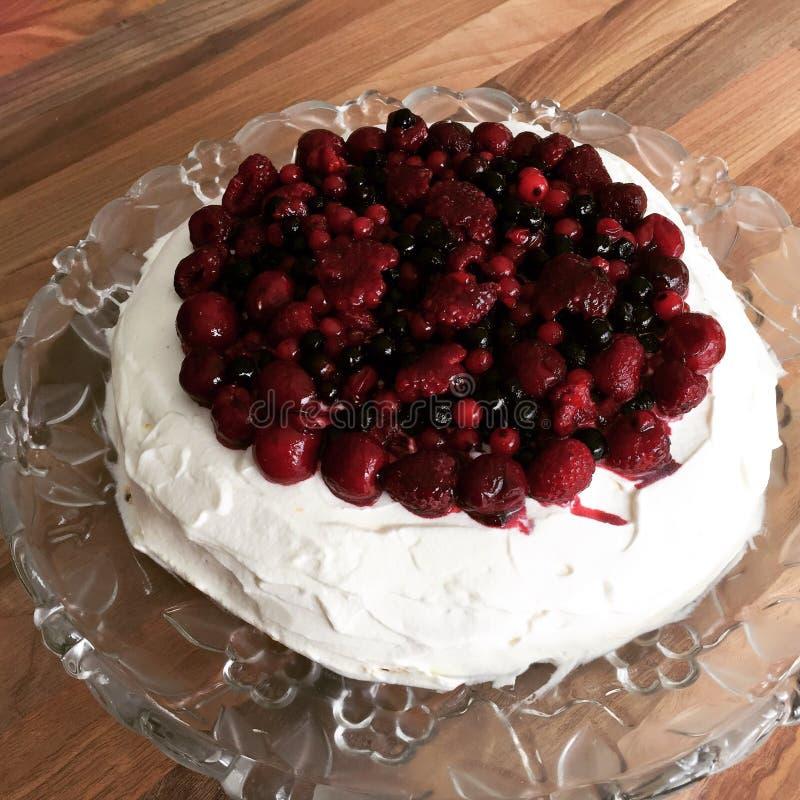 Gâteau de vacherin photographie stock