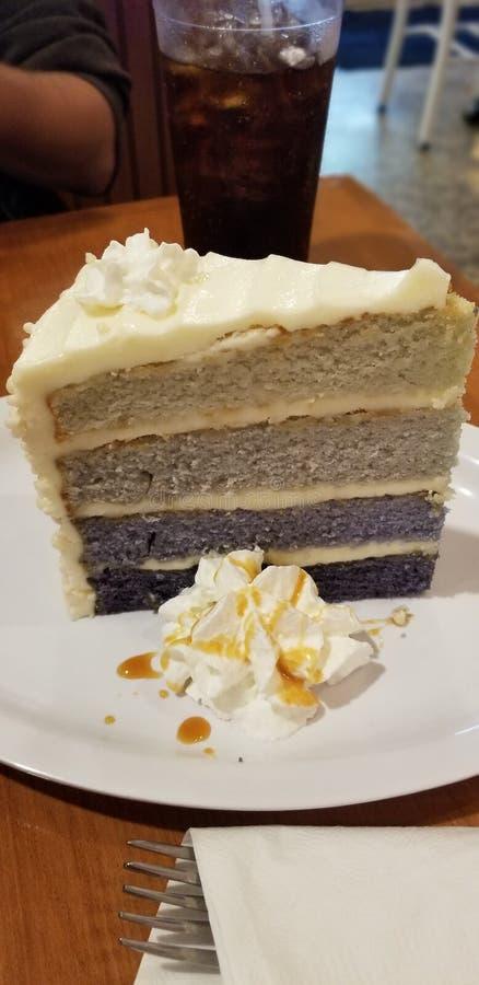 Gâteau pourpre de myrtille de Blackberry d'ombre photographie stock libre de droits