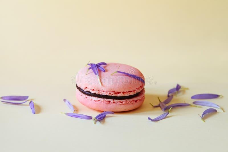 Gâteau rose savoureux de macaron ou de macaron avec le remplissage de chocolat et pétales violets de fleur fraîche sur le fond ja photos stock