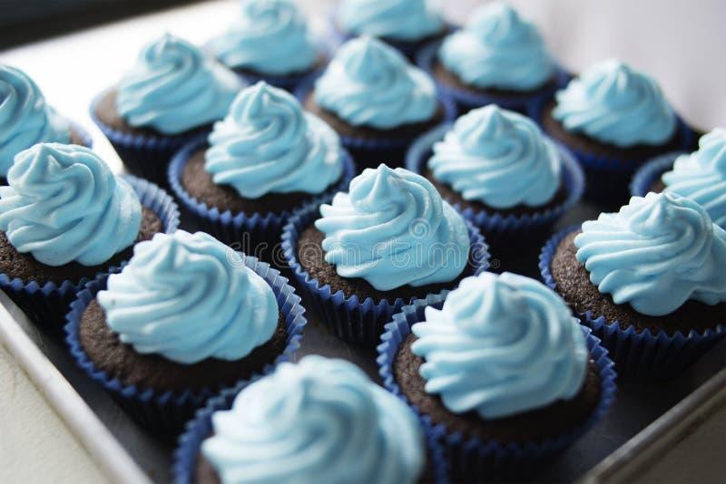 Gâteaux délicieux doux fraîchement cuits au four de tasse photos stock