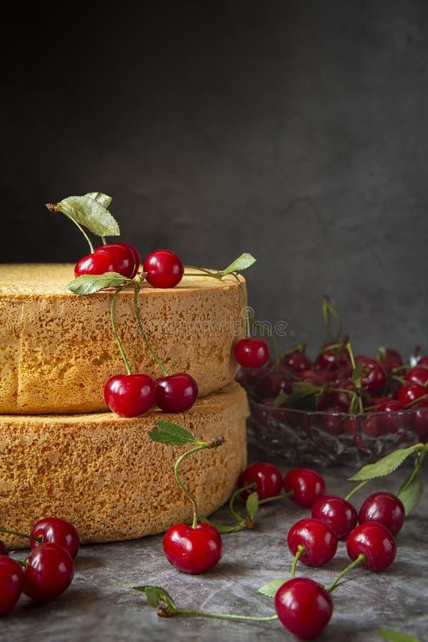 Gâteaux de biscuit avec des baies de cerise sur un fond foncé Cuisson, préparation des couches de l'éponge pour rassembler la cer photos stock