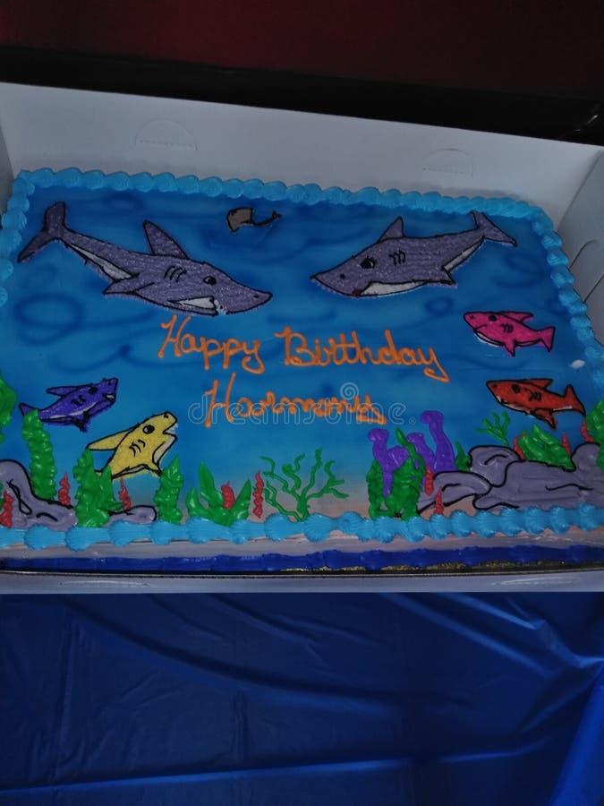 Gâteaux de requin photos libres de droits