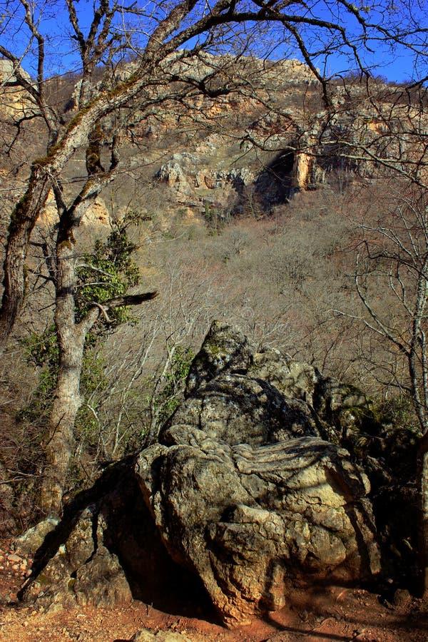 Góry i drzewa w wczesnej wiośnie, obrazy royalty free